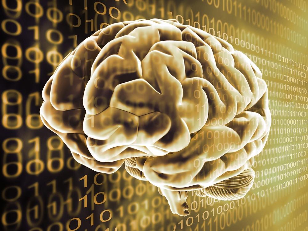 Cerveau-mode-d-emploi
